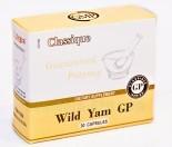 wild_yam_gp